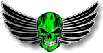 GOTHIC SKULL With Wings Motif  &  Green Flames External Vinyl Car Sticker 150x80mm